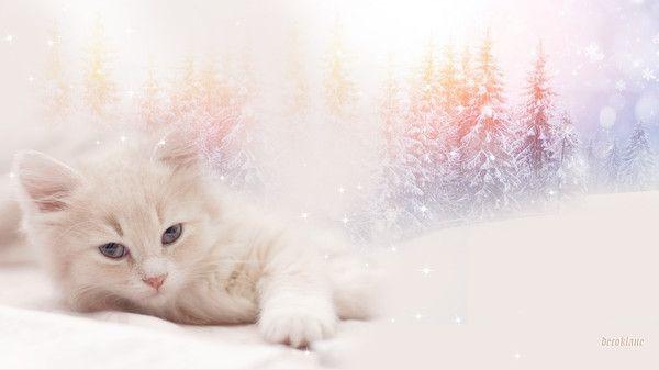 Fonds ecran automne hiver page 2 for Fond ecran hiver animaux